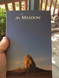 Within these pages is my novella, STILL LIFE. It won the Meadow Prize.